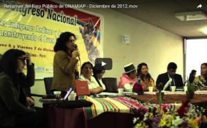 Resumen del Foro Público de ONAMIAP – Diciembre de 2012