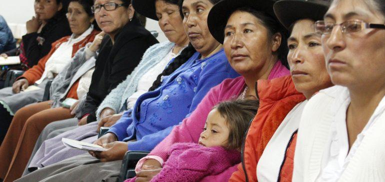 Hacia el fortalecimiento de la participación de la mujer indígena en la gobernanza comunal