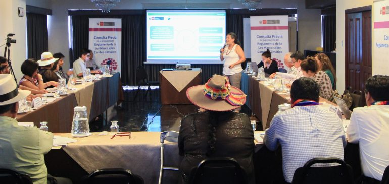 Pueblos indígenas presentan propuestas para Plan de Consulta del RLMCC