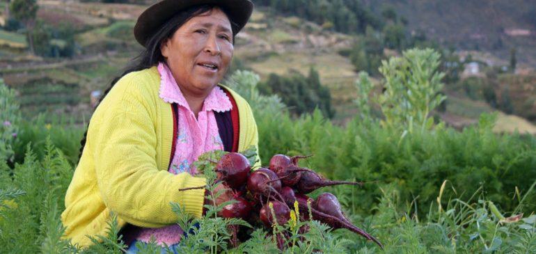 Por un Viceministerio de Agricultura Familiar participativo e indígena