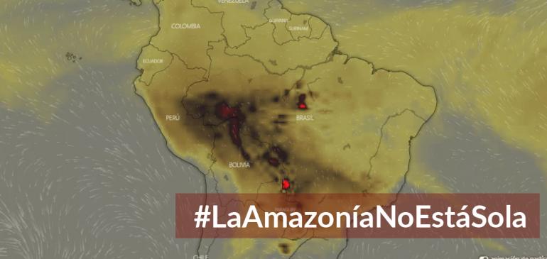 Incendios en la Amazonía: Investigación y atención a pueblos indígenas afectados