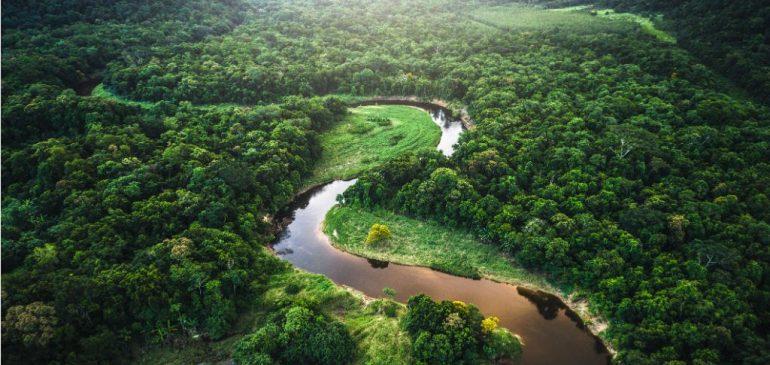Día de la Pachamama: Protejamos a los defensores y defensoras de la Madre Tierra