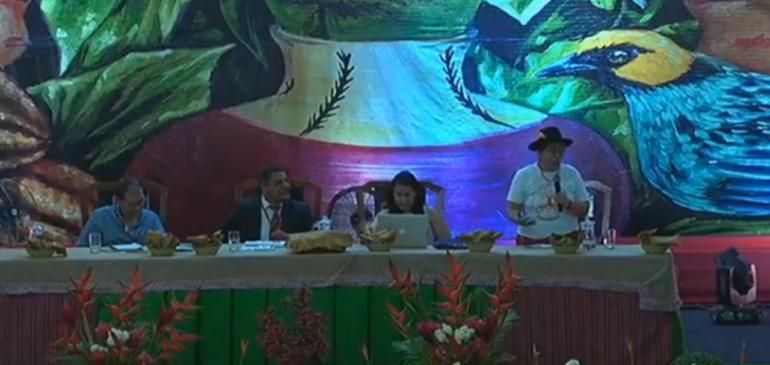Video: Aproximaciones a la consulta previa en Perú – Melania Canales