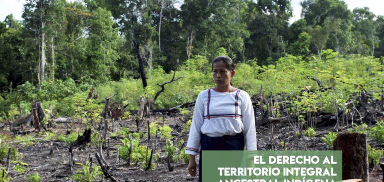 El derecho al territorio integral ancestral indígena