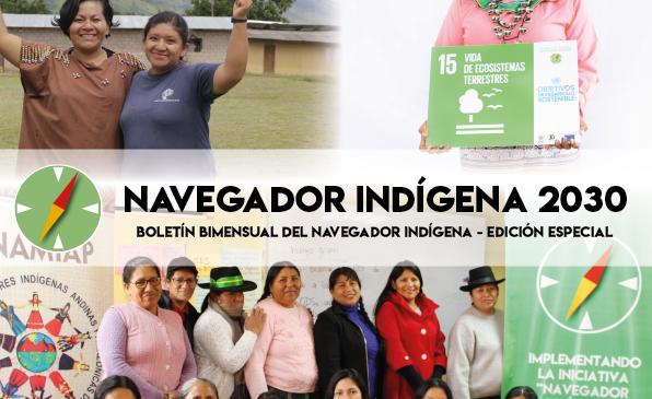 Boletín «Navegador Indígena» 2030 – N°2