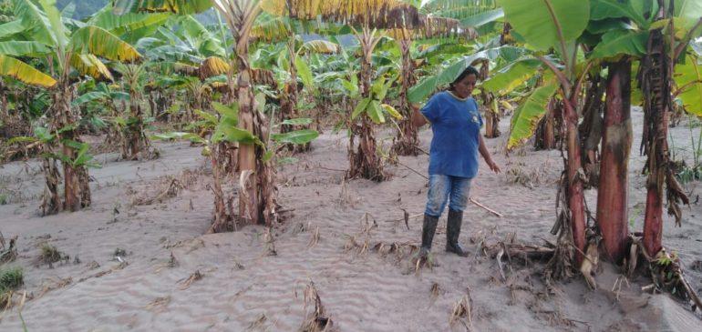 Desastres climáticos afectan con mayor fuerza a nuestros pueblos indígenas