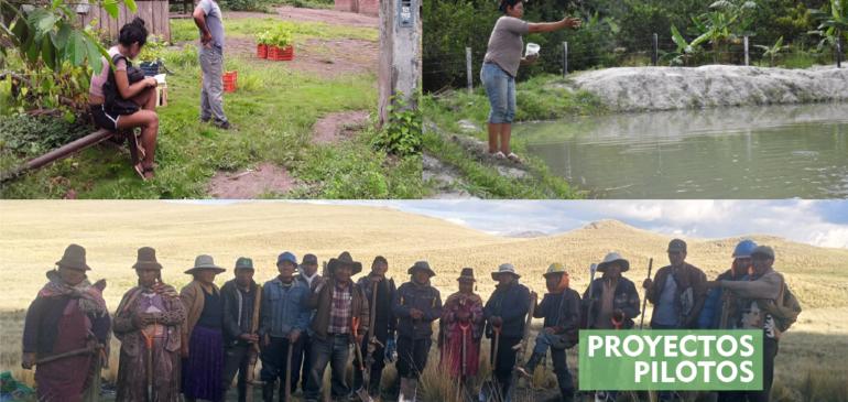Proyectos comunales en Junín y Puno cumplen más de 6 meses