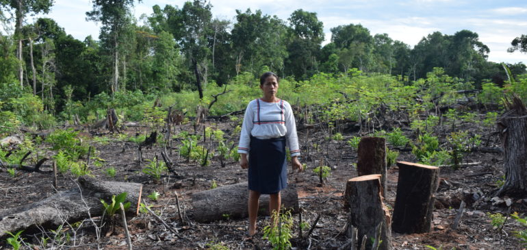 Día de la Tierra: cambiar el modelo en defensa de la vida