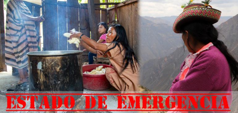 Resistencia indígena, coronavirus y desigualdades sociales