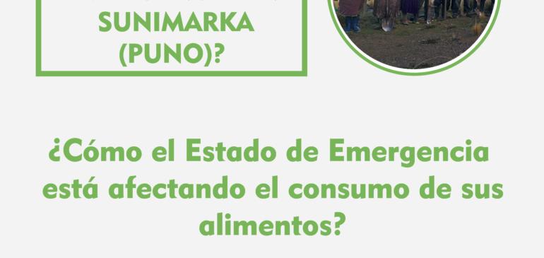 ¿Cómo se vive el Estado de Emergencia en Sunimarka (Puno)?