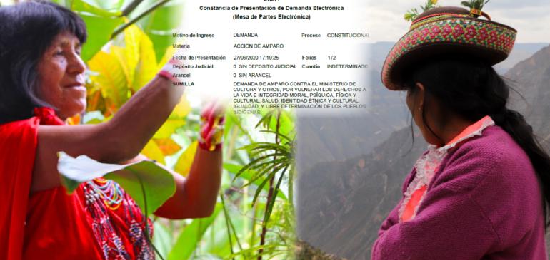 ONAMIAP inicia acción judicial contra el Gobierno por poner en riesgo a los pueblos indígenas durante la pandemia del COVID-19
