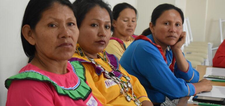 ¿Cómo operativizar el Plan de Acción de Género y Cambio Climático desde la mirada de las mujeres indígenas?