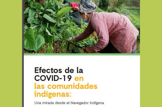 Efectos de la COVID-19 en las comunidades indígenas