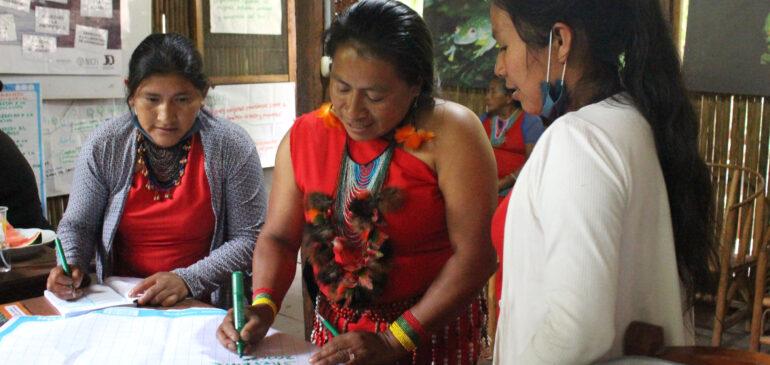 Una herramienta para medir y promover la participación de las mujeres indígenas en la gobernanza territorial