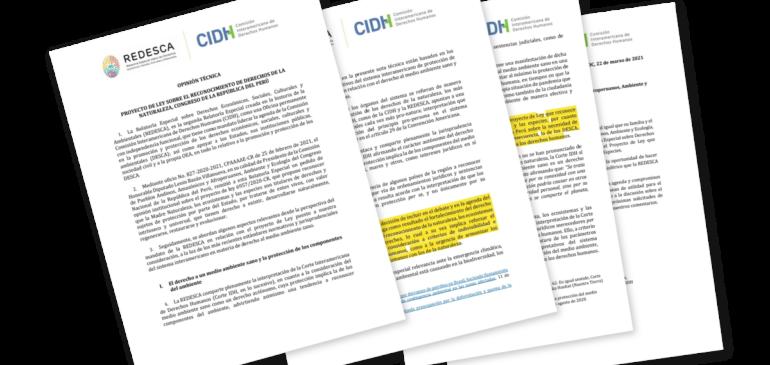 CIDH respalda proyecto de ley que reconoce los derechos de la naturaleza
