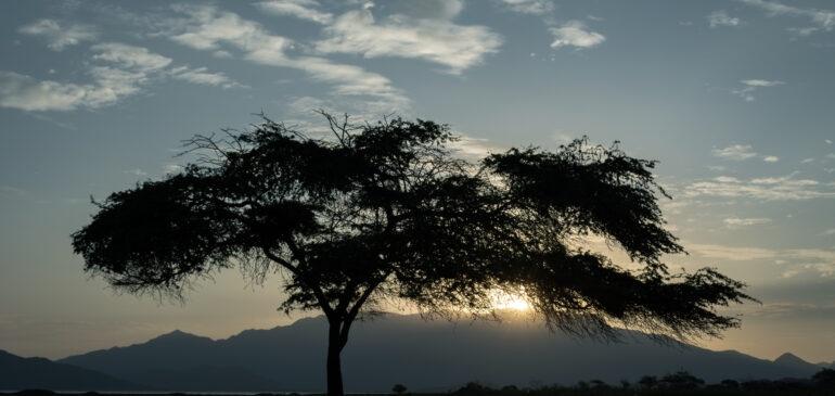 ONAMIAP en el Día Internacional de la Tierra