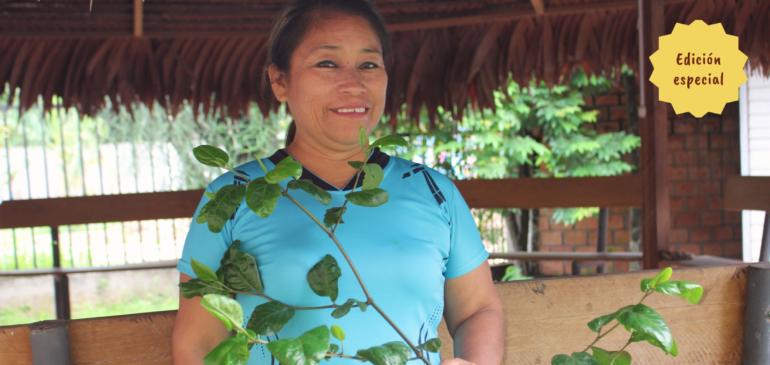 Boletín N° 3: Mujeres indígenas, cambio climático y bosques
