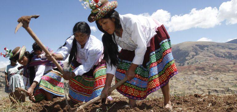 Día del Campesino y la Campesina exigimos el reconocimiento de nuestros territorios integrales